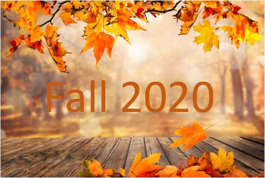 2020 Fall Newsletter
